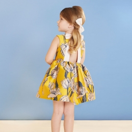 Bow Back Bodice Dress